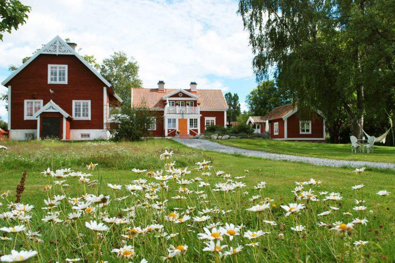 Gårdshus hos Hem till Gården AB med sommaräng i förgrund. Fotograf: Pressbild, Hem till Gården