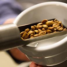Bilden visar en skopa med kaffebönor. Fotograf: Oscar Helgstrand.