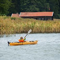 En person paddlar i vattnet. Foto: Pressbild
