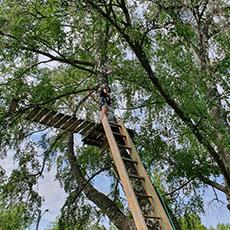 Bilden visar en person som klättrat upp på stegen till Björnögårdens höghöjdsbana.