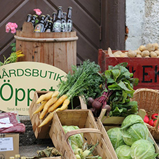 Bilden visar olika grönsaker i grönsakslådor
