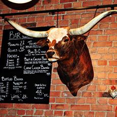En tjur som sitter på väggen hos Texas Long Horn. Foto: Pressbild