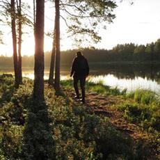 Bilden visar en man som går längst vattnet i skogen