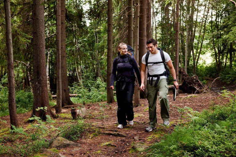 Par som vandrar i skogen. Foto: Mostphotos