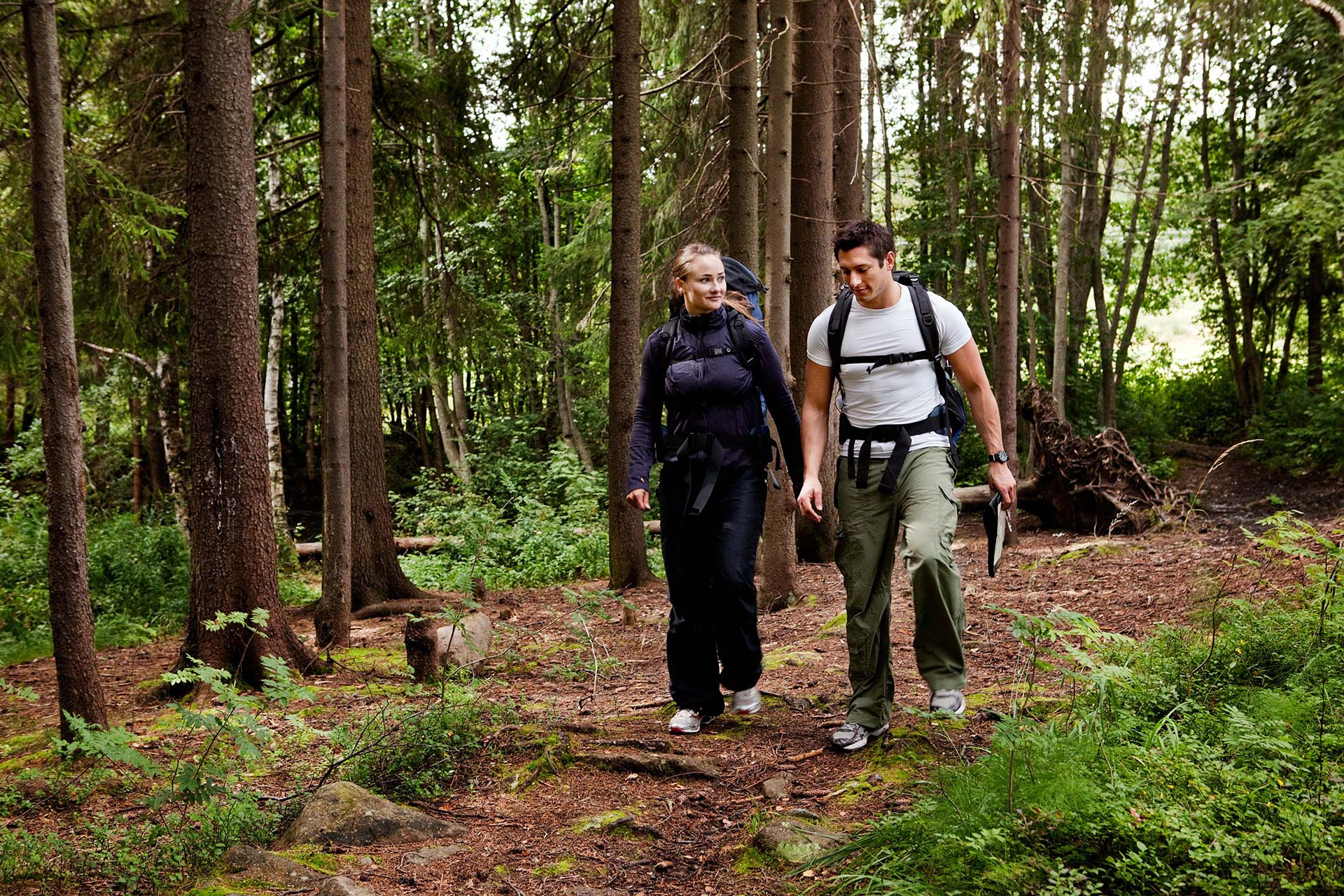 Par som vandrar i skogen. Fotograf: Mostphotos