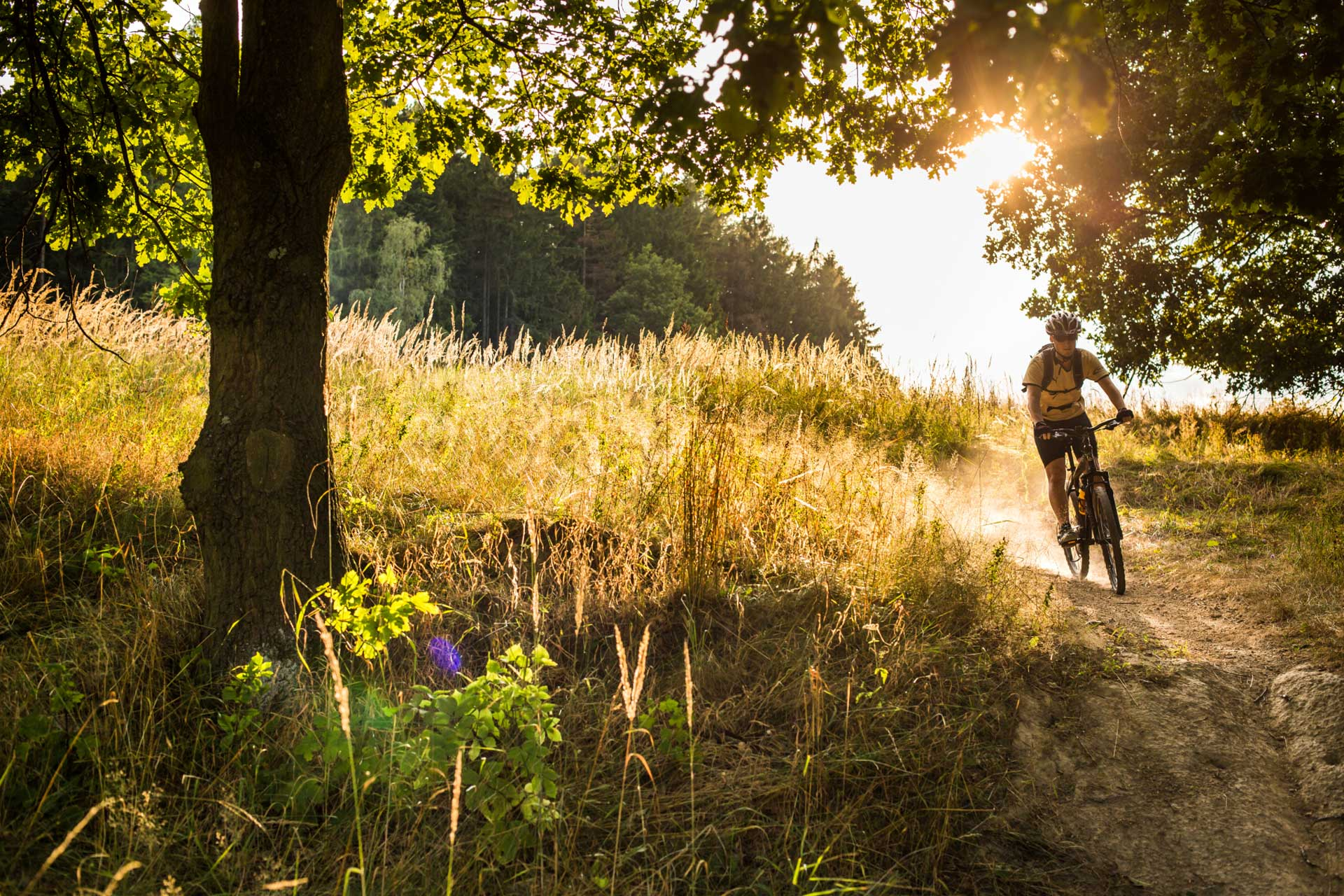 Cyklist på mountainbike i sommarlandskap. Fotograf: Mostphotos