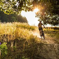 Downhill åkning i sommarsolen nedför Vedbobacken i Västerås. Foto: Mostphotos