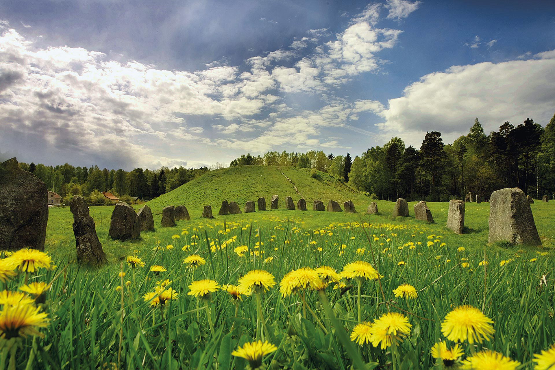 Anundshög i Västerås, Sveriges största forntida gravhög. Fotograf: Clifford Shirly