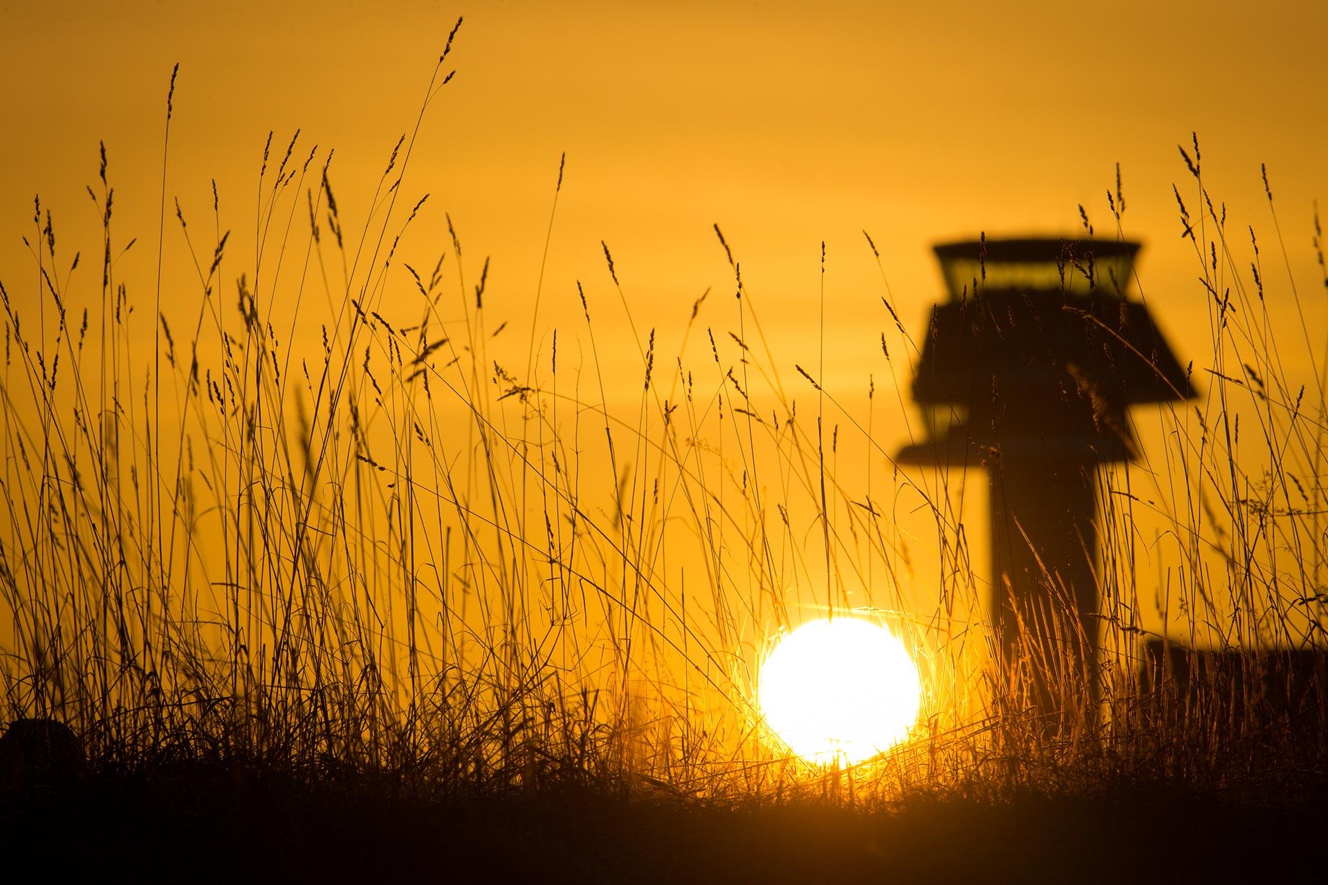 Vi över Arlanda flygplats i solnedgång. Fotograf: Pressbild