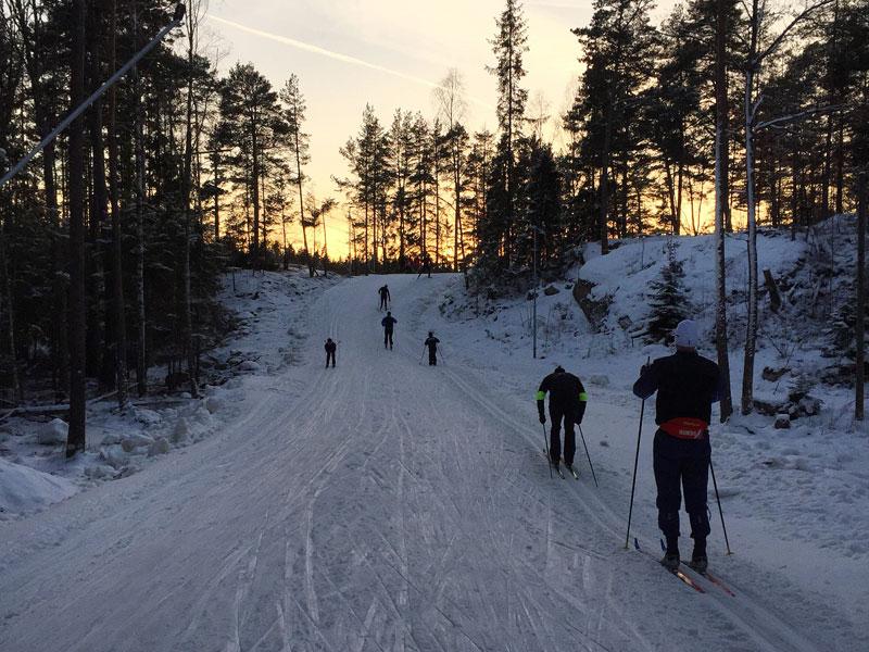 Skidåkare i spåret på Björnön. Foto: Aktivt uteliv
