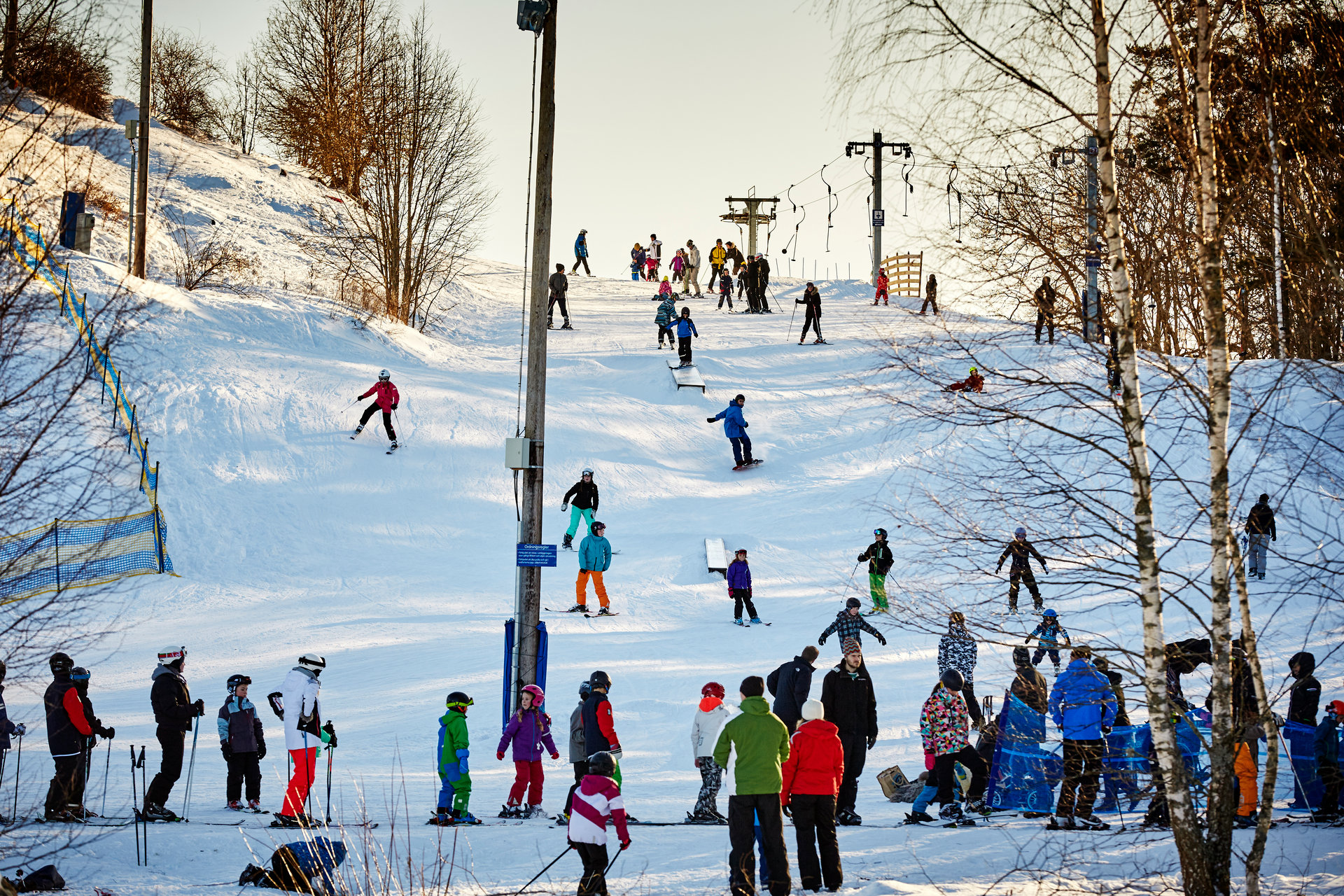 Barn åker skidor från en av backarna på vedbobacken. Fotograf: Pia Nordlander