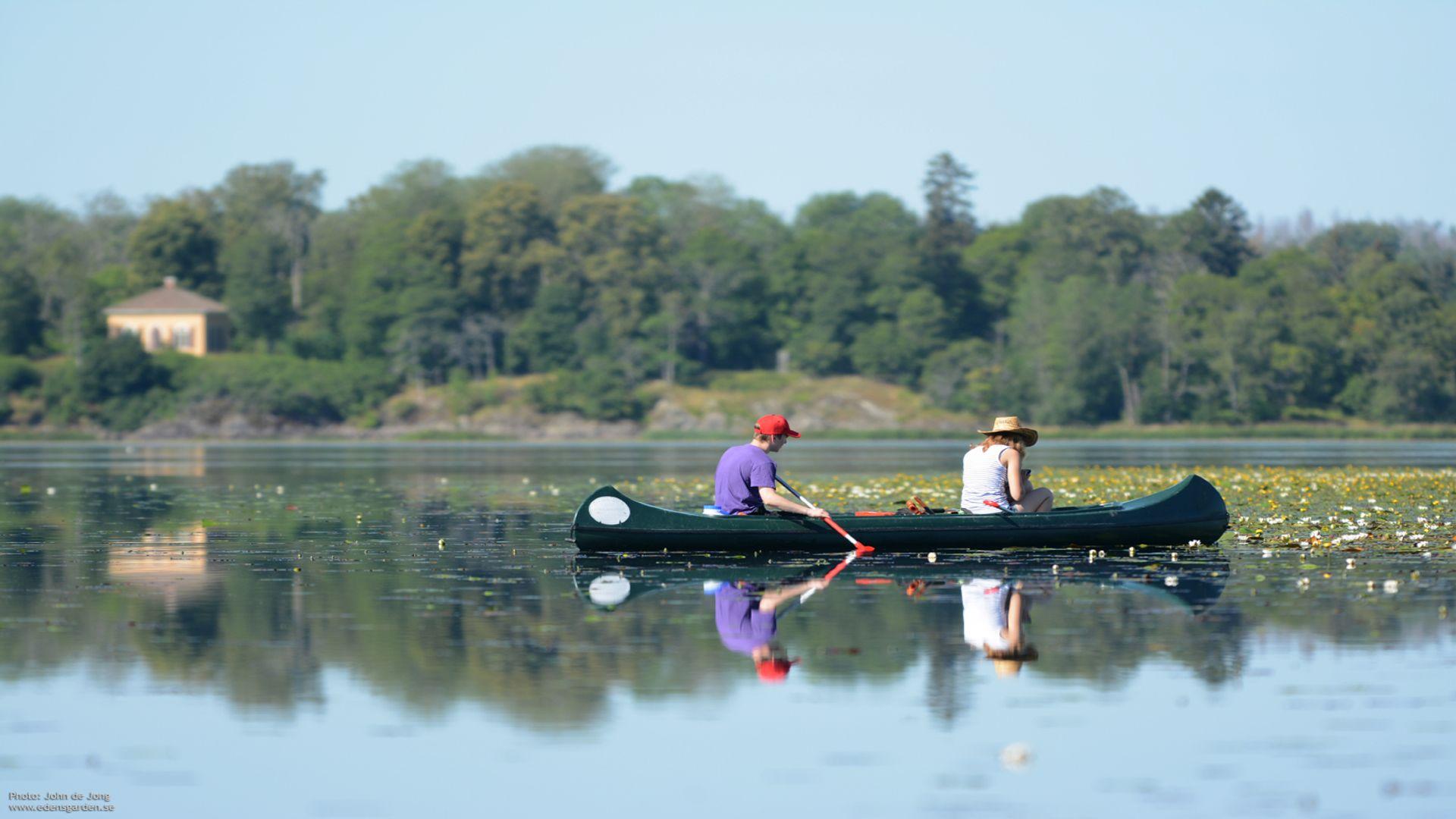 Två personer paddlar. Fotograf: Pressbild Edens Garden