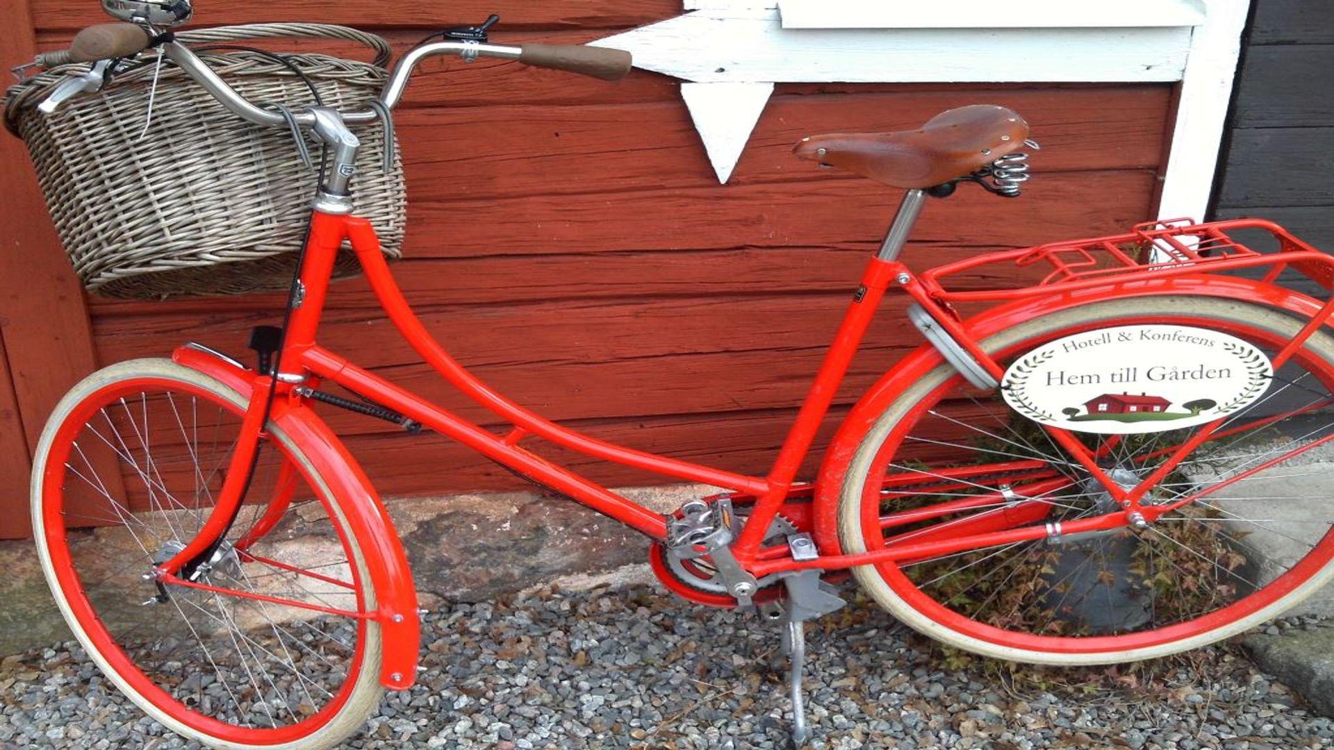 Cykel på hem till gården. Fotograf: Pressbild