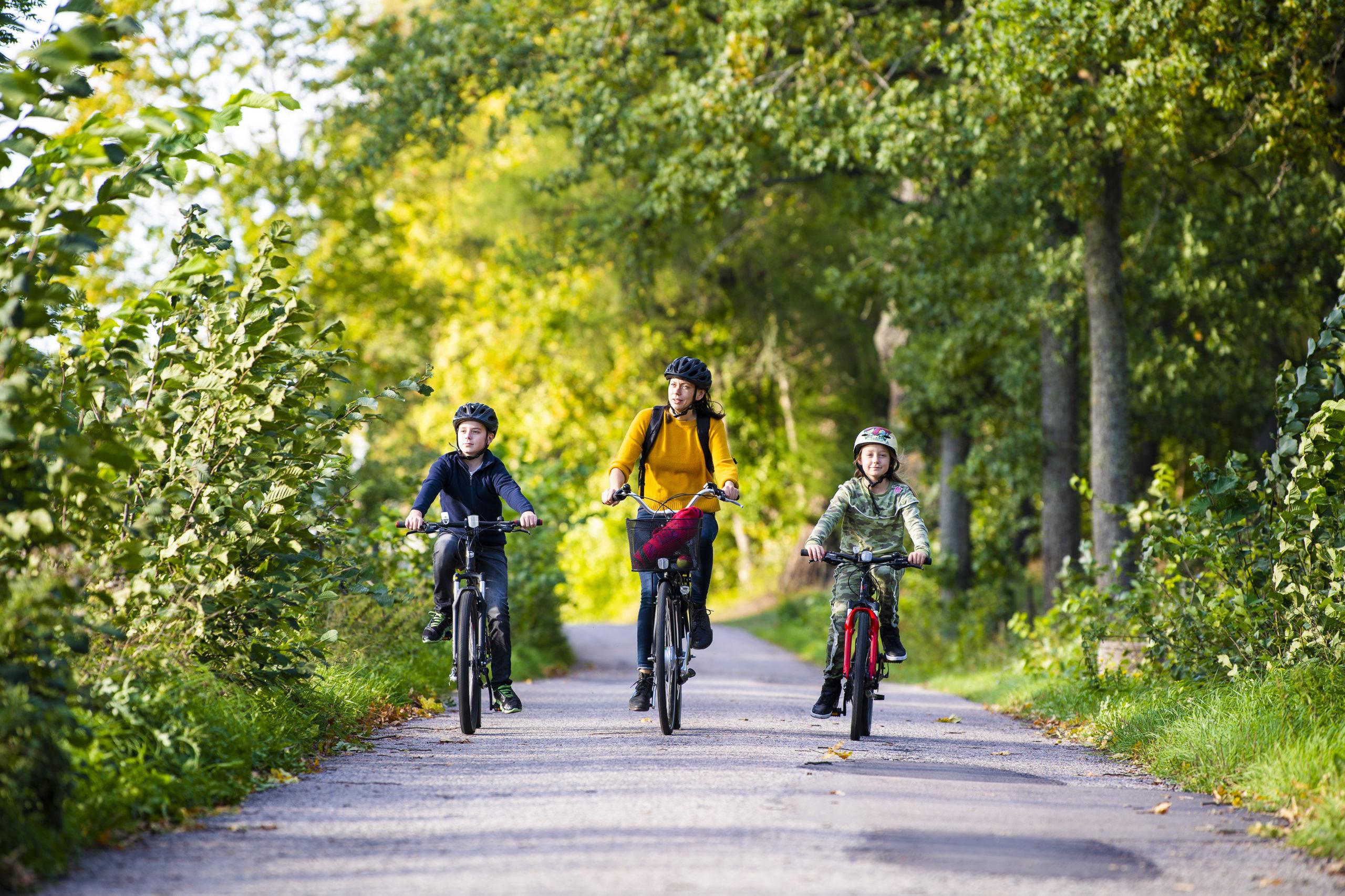 En vuxen och två barn cyklar. Fotograf: Jonas Bilberg