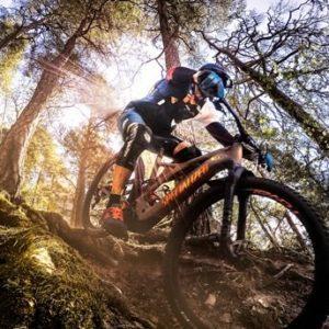 MTB cyklist som cyklar på stigar i skogen. Foto: Leon Grimaldi