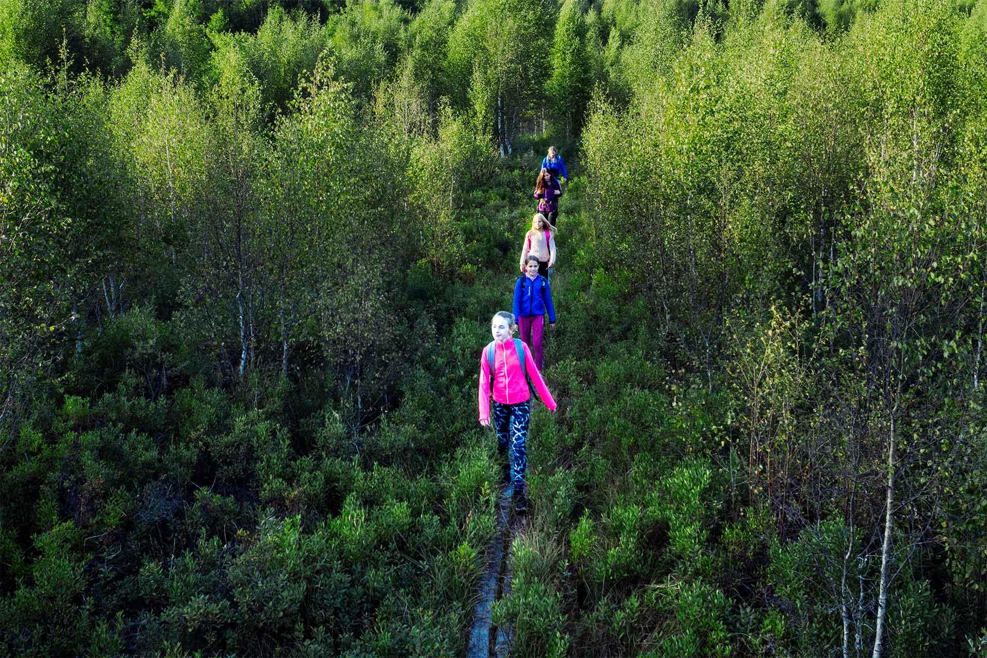 Ungdomar som vandrar på en spång i skogen. Foto: Roger Borgelid.