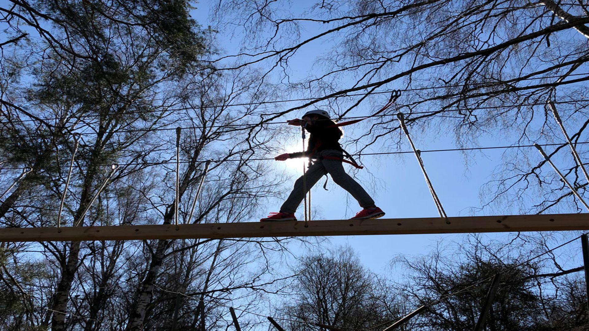 En person går höghöjdbanan intill trädtopparna. Fotograf. Aktivt uteliv pressbild