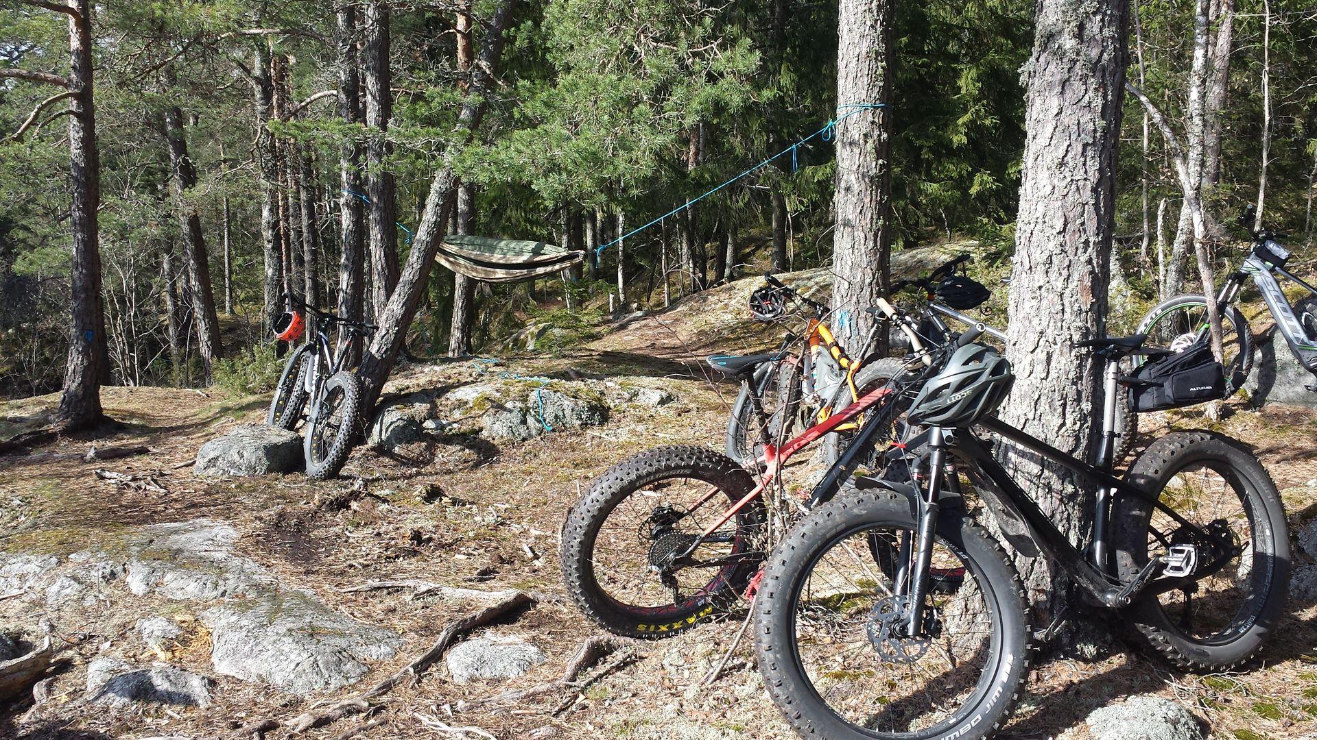 Cyklar liggandes mot träd med hängmatta. Fotograf: Pressbild kungsörstorp