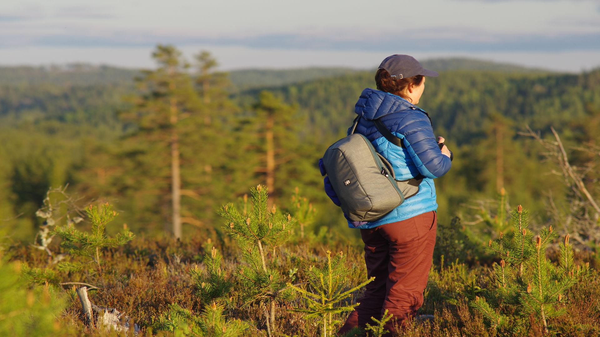 En person står i den gröna skogen. Fotograf: Pressbild