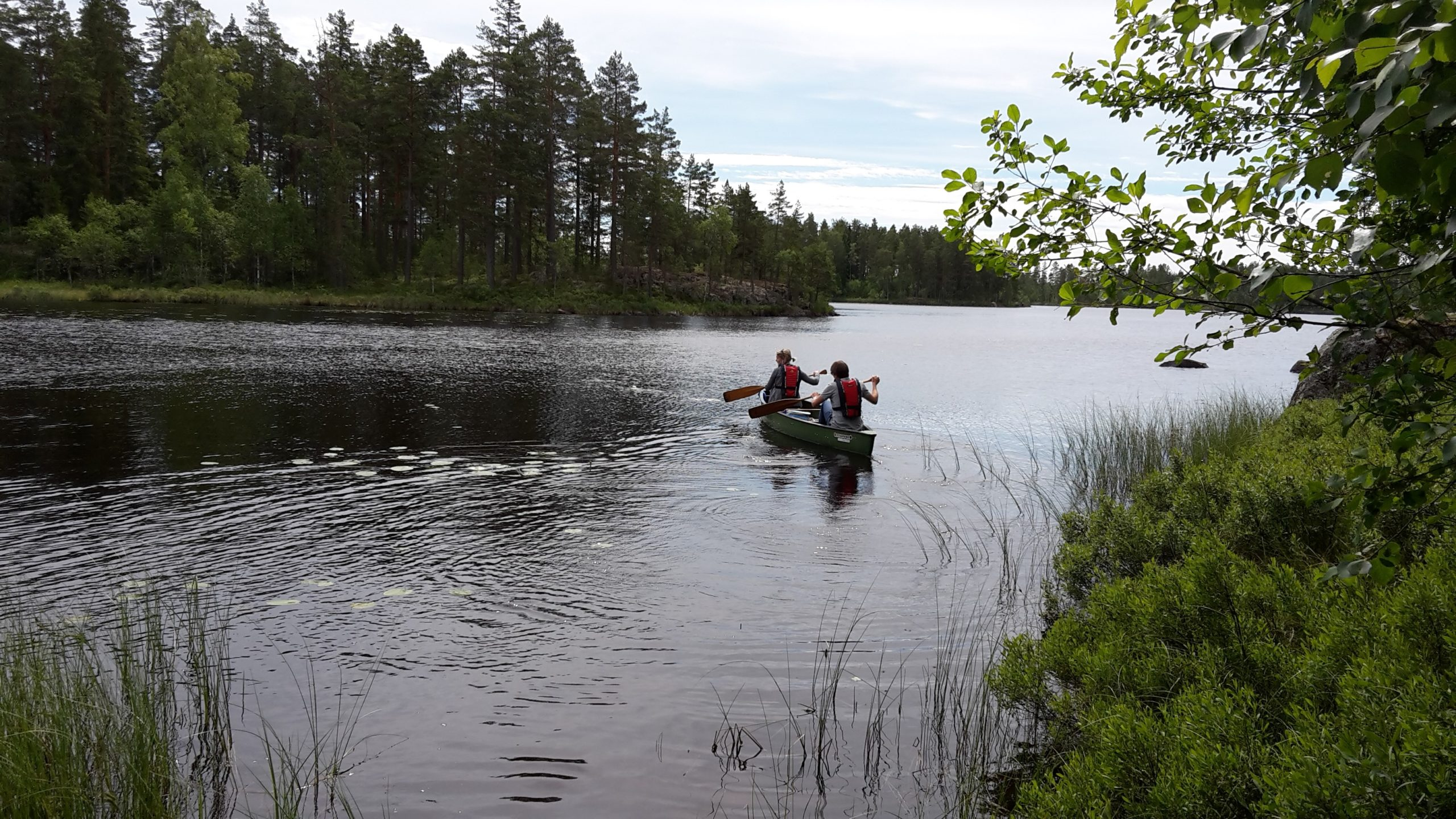 Två personer paddlar på sjön