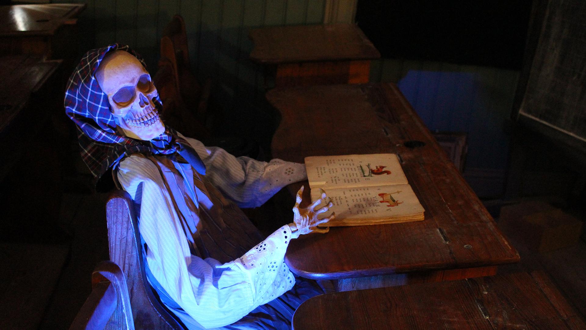 Skelet läser bok i mörkret. Pressbild